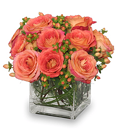 Just Peachy Roses for Mother's Day
