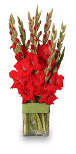 Classy Red Flowers For Mom