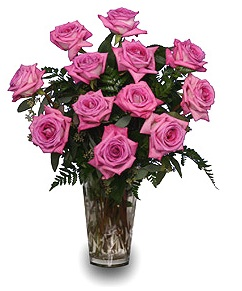 Pink Roses For June