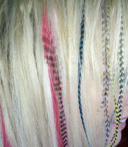 Hair Feathers