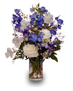Blue September Flowers