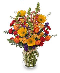 Flowers for September