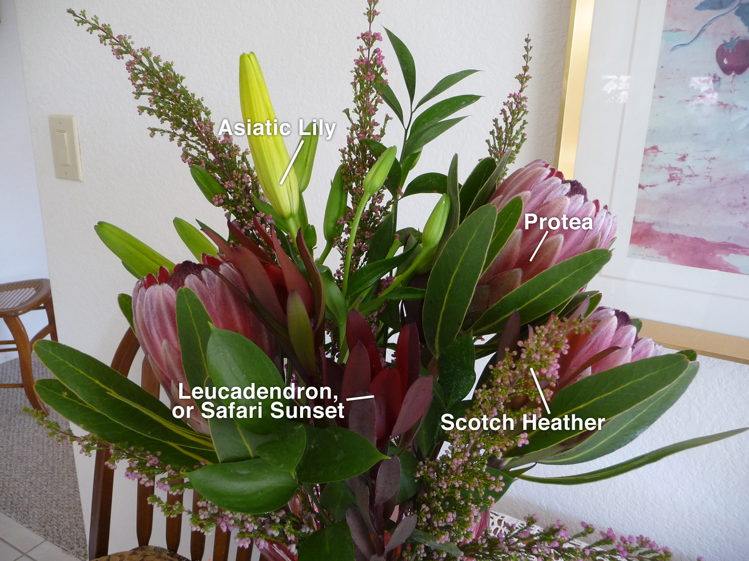 What Are The Names Of The Flowers In My Floral Arrangement