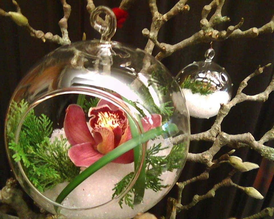 Live Orchid Christmas Ornament