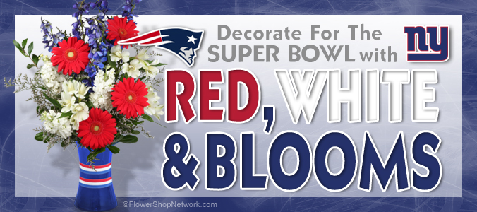 Decorating Ideas For Super Bowl 2012