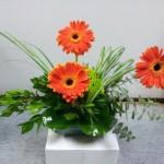 Gerbera flower arrangement by Buds & Blossoms, Edgewood MD