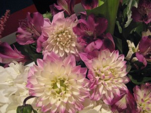 Dahlias in the Flower Shop Network Booth at the Tennessee State Florist Convention Trade Show
