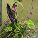 Orchids at the North Carolina State Florist Convention