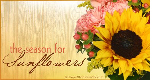 Season to Send Sunflowers