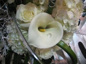 Diamond inside calla lily.