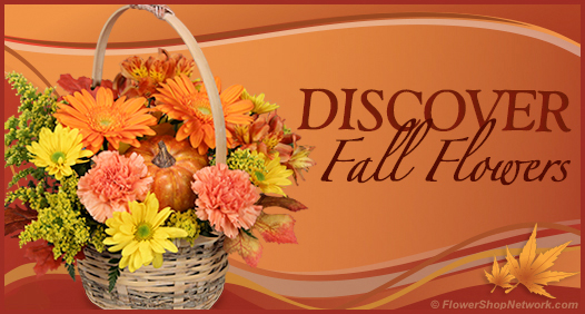 Discover Fall Through Flowers