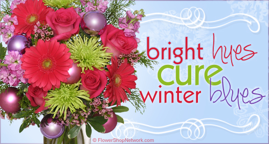 Cure the winter blues with colorful flowers