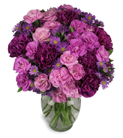 Purple Flowers For Valentines