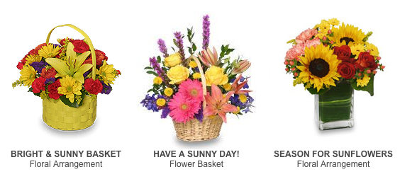 Sunny Flowers for Get Well Wishing!