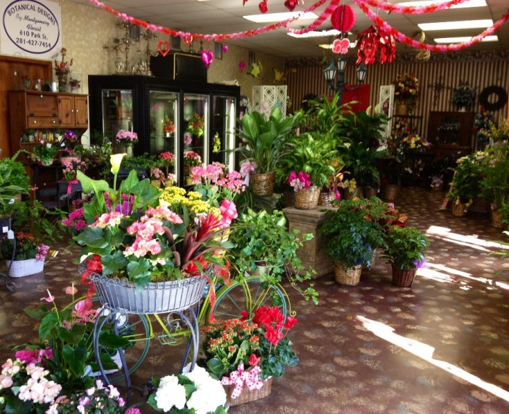 Interior of Botanical Designs, Baytown TX