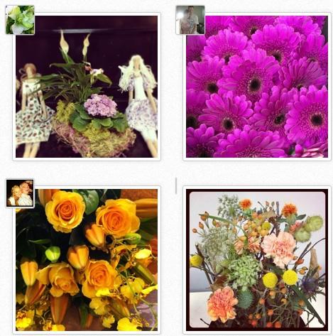Florists of Instagram
