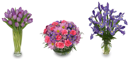 Purple Flowers for February Birthdays