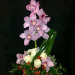 Orchid arrangement by West End Florist, Rome GA