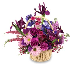 Basket Garden Flowers