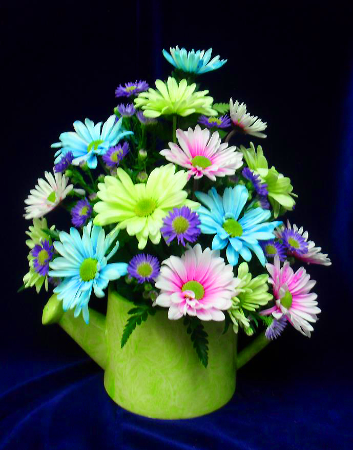 Fun colored arrangement by Buds & Blossoms, Edgewood MD