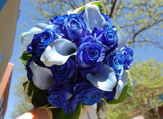Very blue wedding bouquet by Monday Morning Flowers, Princeton NJ