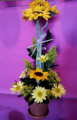 Arrangement of the week by SARASOTA ENCHANTED FLOWERS in Sarasota FL