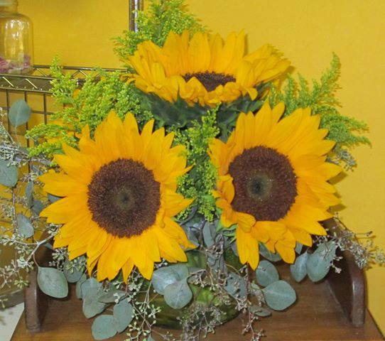Local Sunflowers by Inspirations