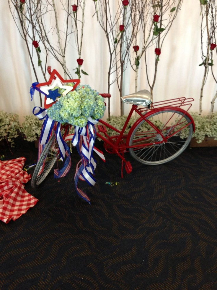 Patriotic Display Bike