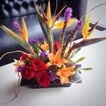 Tropical Arrangement by Flowers Plus, Charlotte, NC