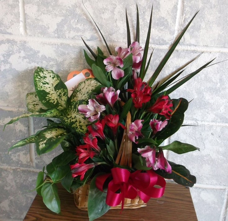 Flowers with a plant by A-1 Flowers & More in Cottonwood, ID