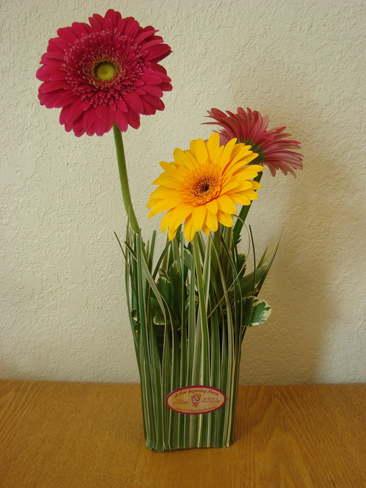 Friday florist recap  chock full of floral