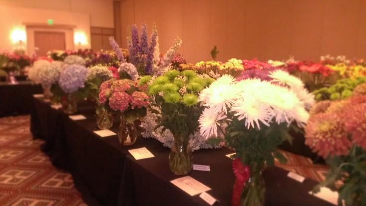 Outstanding Varieties Exhibition