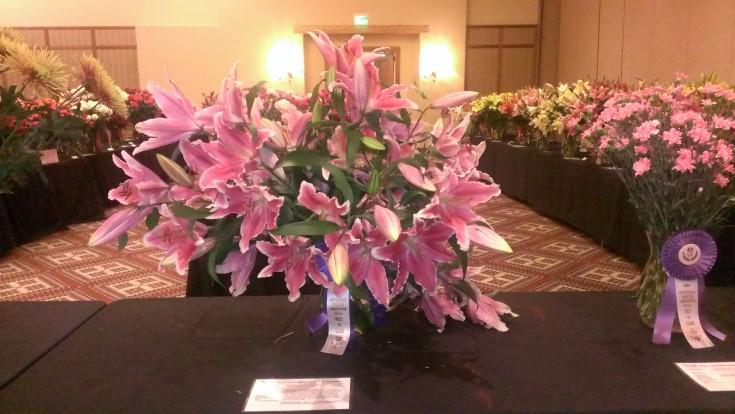 Outstanding Varieties Exhibition2
