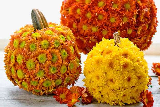 A halloween without flowers spooky for Autumn flower decoration