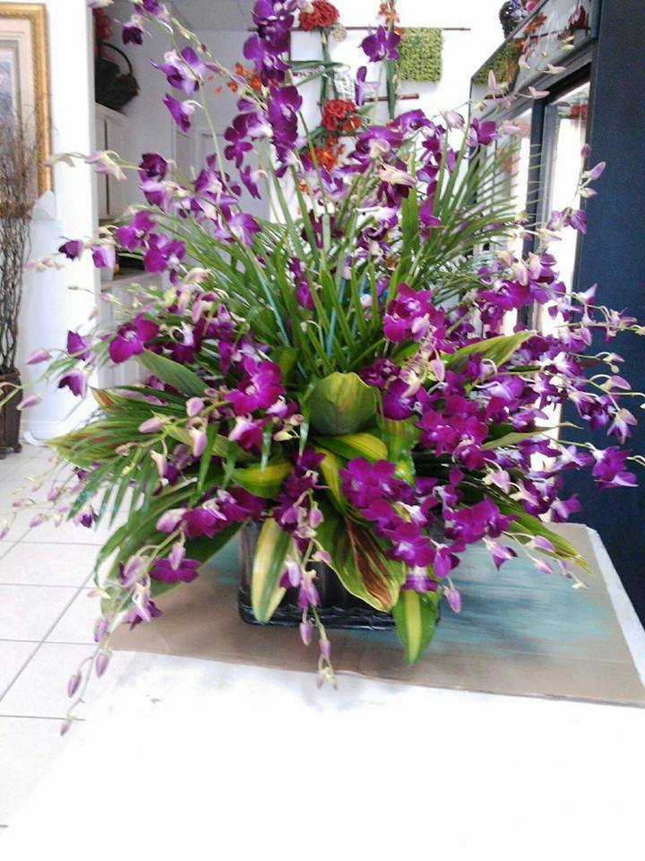 an orchid dendorium arrangement from diving ideas and flowers for you in edinburg tx