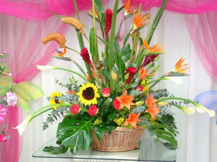 An exotic arrangement from Divine Ideas and Flowers For You in Edinburg, TX