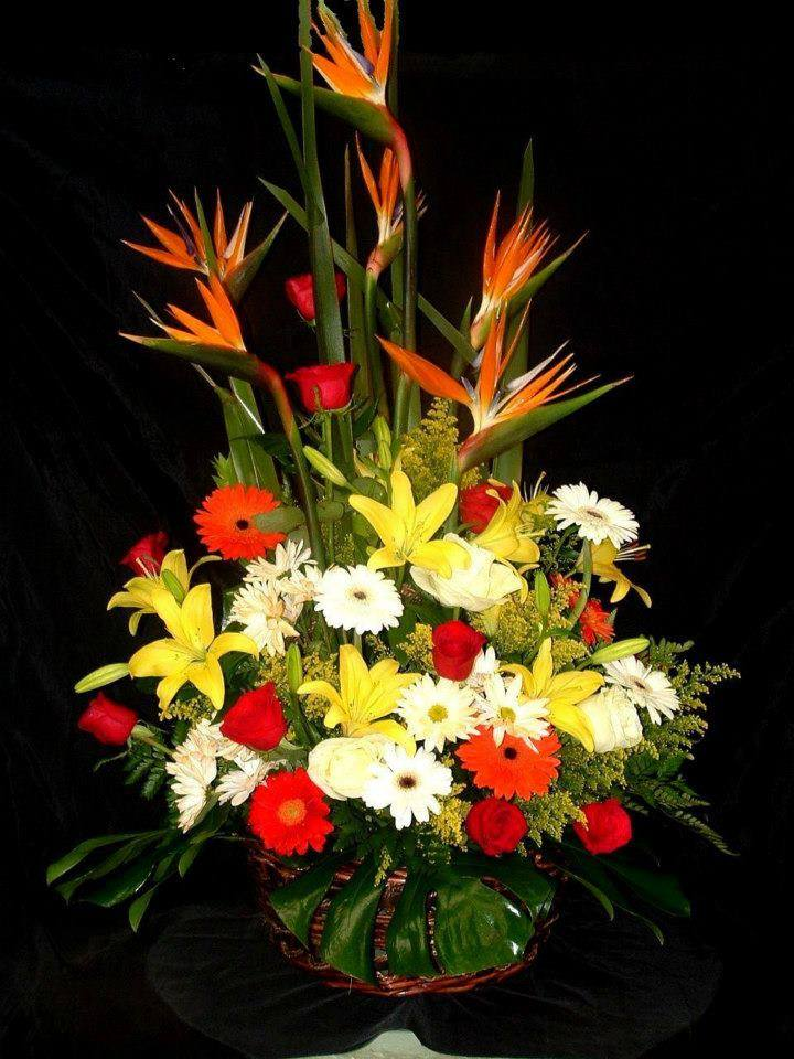 Lovely fall arrangement from Divine Ideas and Flower For You in Edinburg, TX