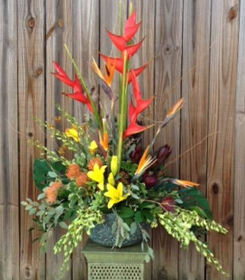 Tropical flowers by Colleyville Florist, Colleyville TX