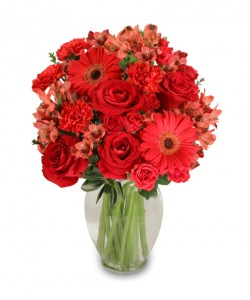 Crimson Perfection Floral Arrangement