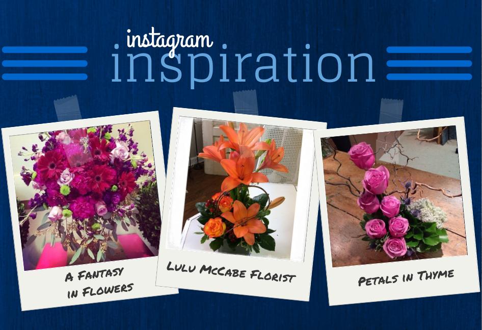 Instagram Inspiration Jan 28