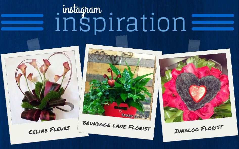 Instagram Inspiration Feb11