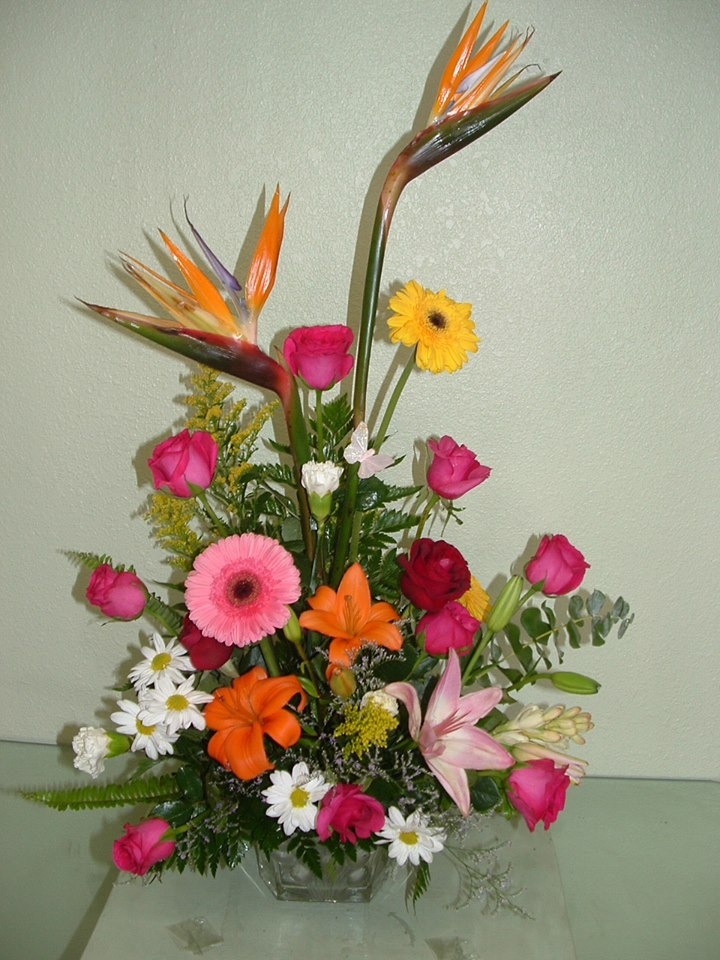 Small mixed flower arrangement from Divine Ideas and Flowers For You in Edinburg, TX
