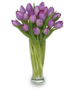 Amethyst Tulips