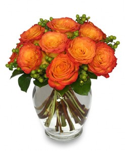 Flames of Passion Roses