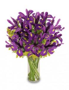 purple-heart-iris-vase.425