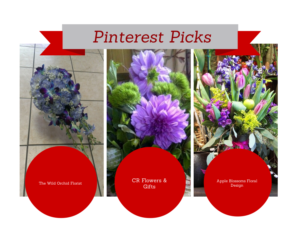 Copy of  Copy of  Pinterest Picks Jan 21 2014  (1)