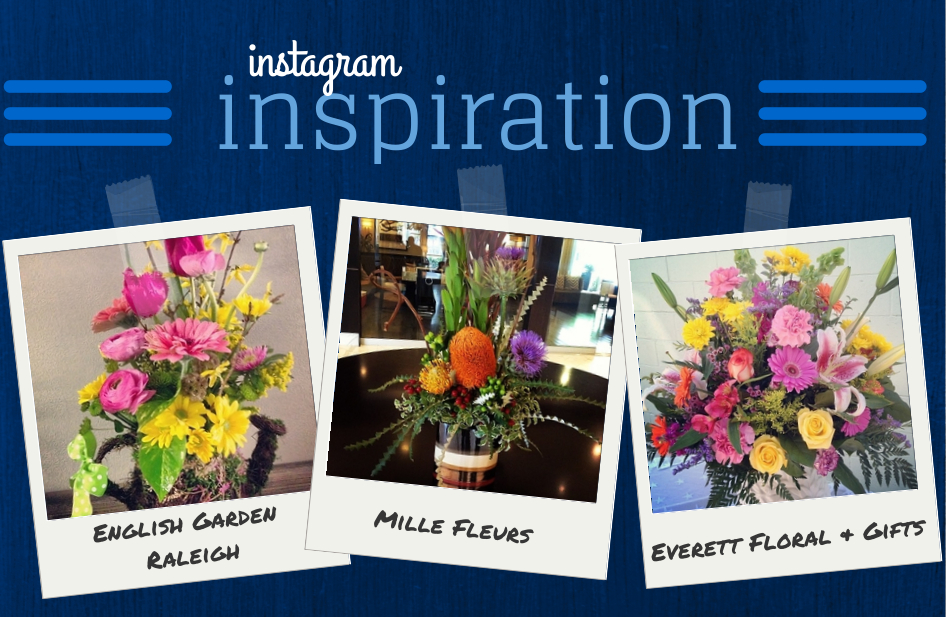 Instagram Inspiration Feb 25
