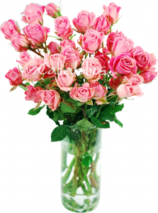 pink spray roses in vase