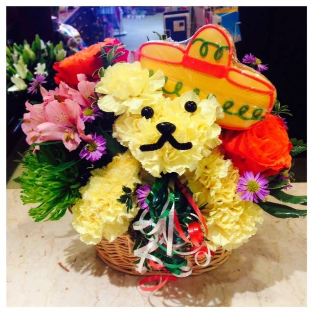 A fiesta Cinco De Mayo puppy from Monday Morning Flower and Balloon Co. in Princeton, NJ
