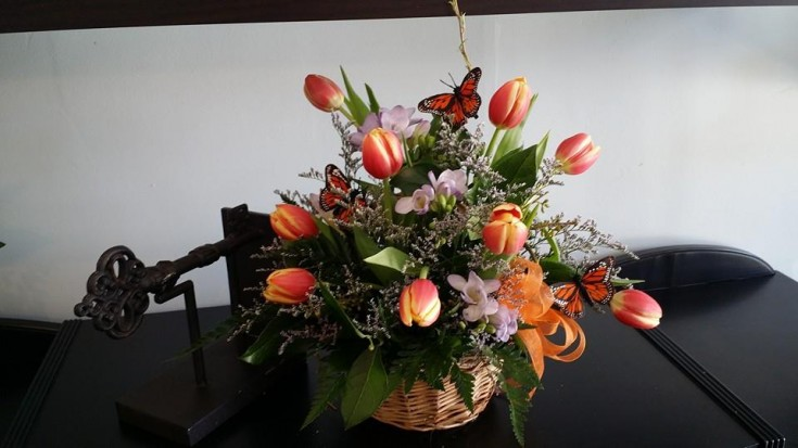 A lovely tulip arrangement from Blue Shores Flowers & Gifts in Wasaga Beach, ON